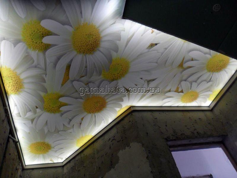квіти на стелі