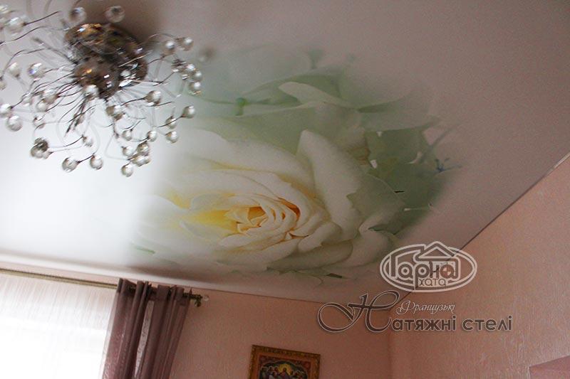 матові натяжні стелі квітка роза
